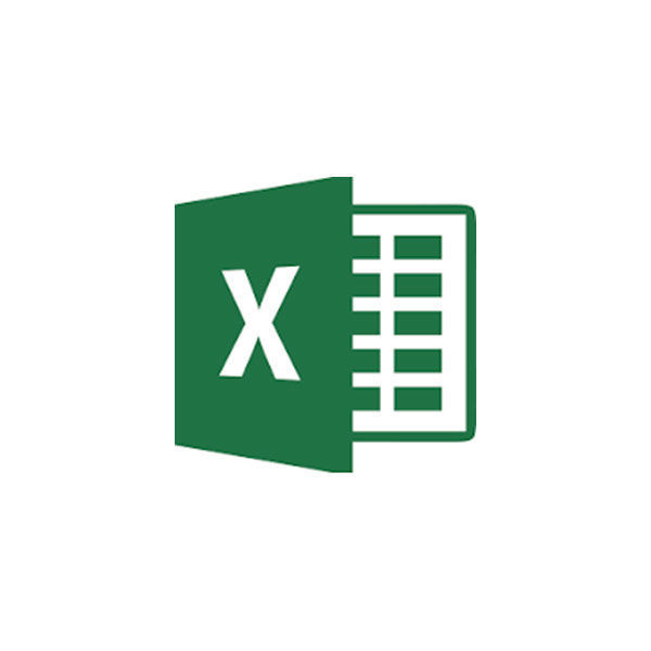 Picture of Microsoft Excel  Advanced
